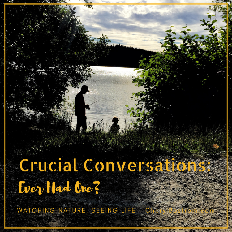 Crucial Conversations: Ever Had One? Silhouetted father and daughter