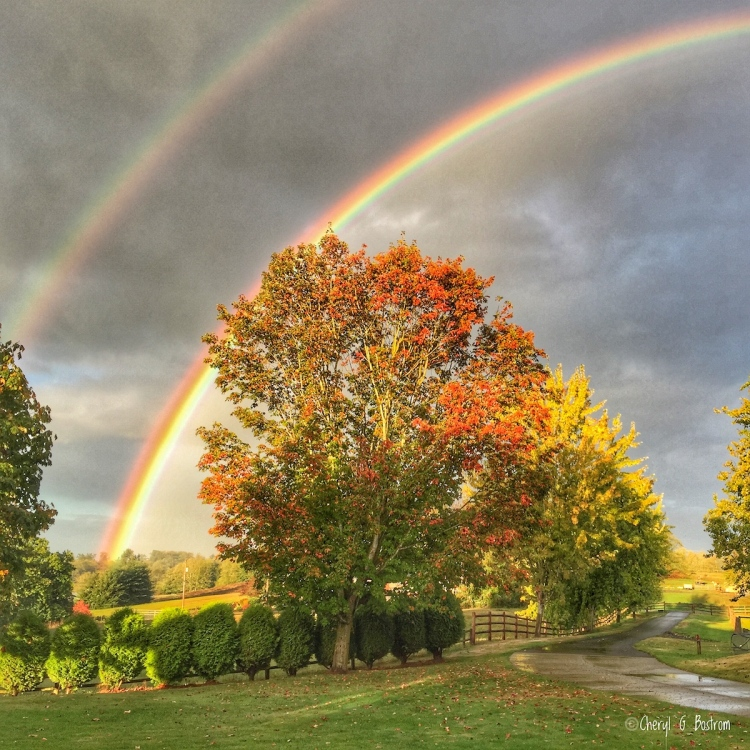Double rainbow over autumn maples in stormy sky