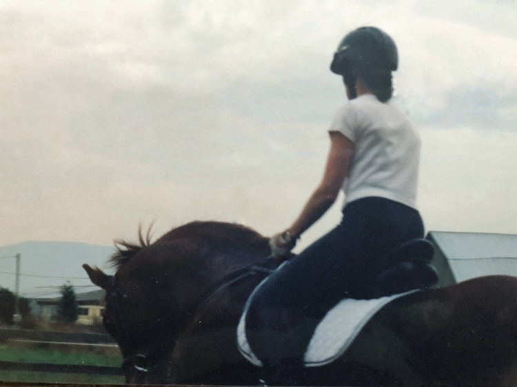 Sorrel gelding in soft, round frame