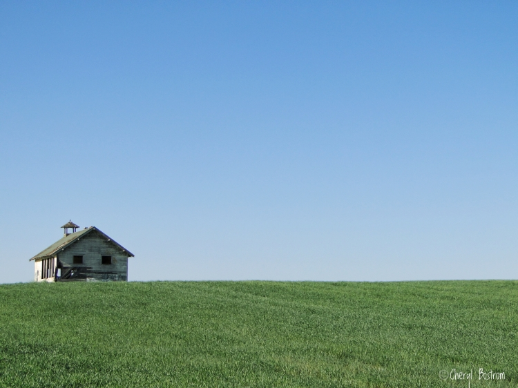 Abandoned Washington schoolhouse in wheat field