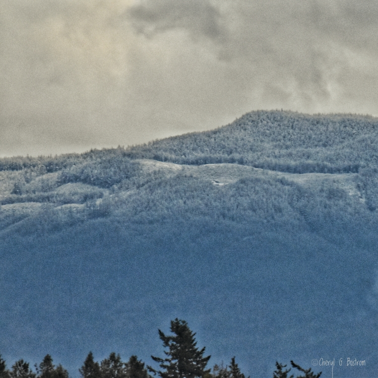 Fresh snowline in PNW foothills