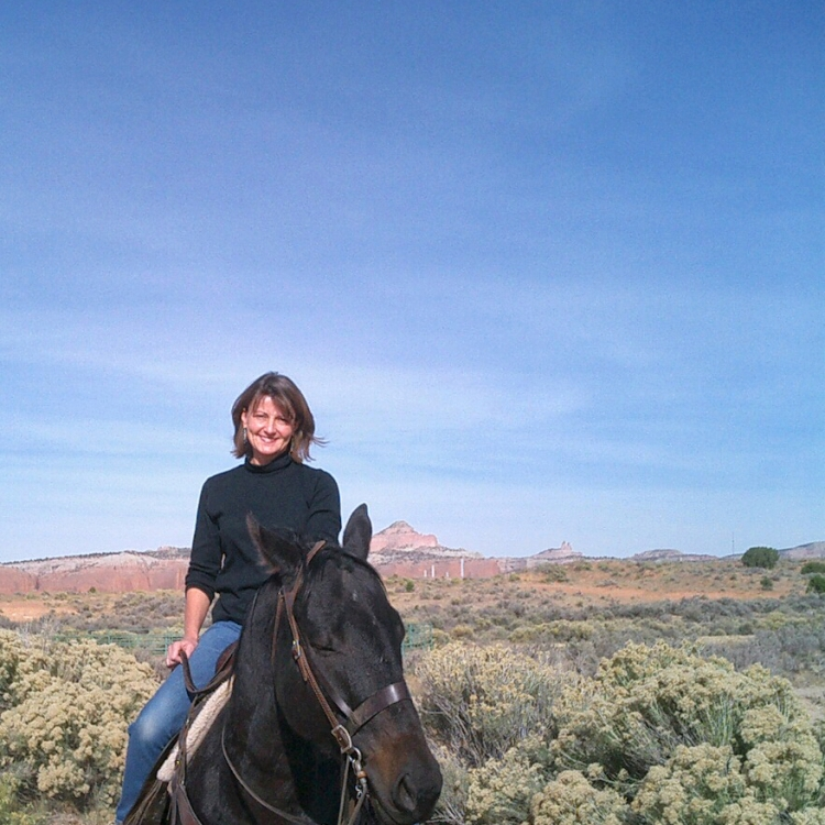 Smiling woman sits on black horse in New Mexico scrubland