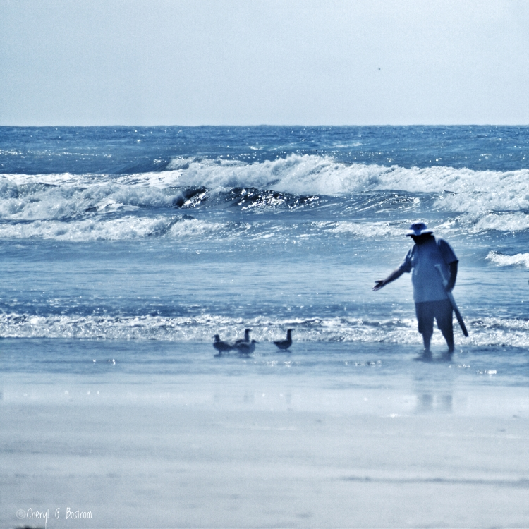 Large man reaches for gulls on sandy shore