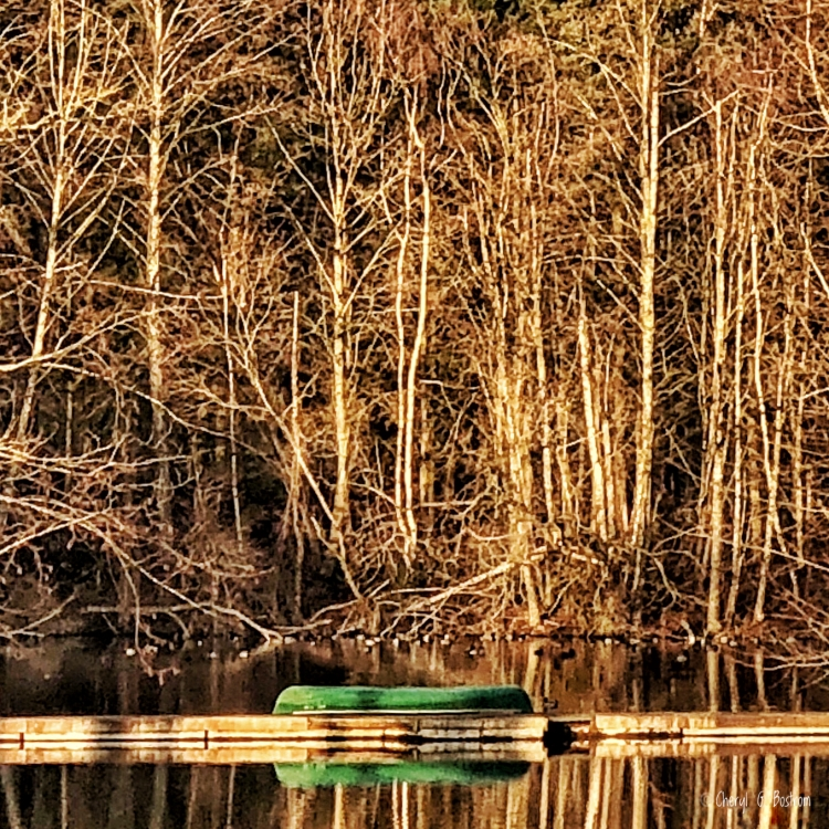 Green canoe on dock reflects in placid, tree-rimmed pond