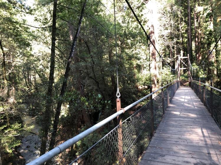 Suspension bridge at Mt. Hermon Christian Conference Center
