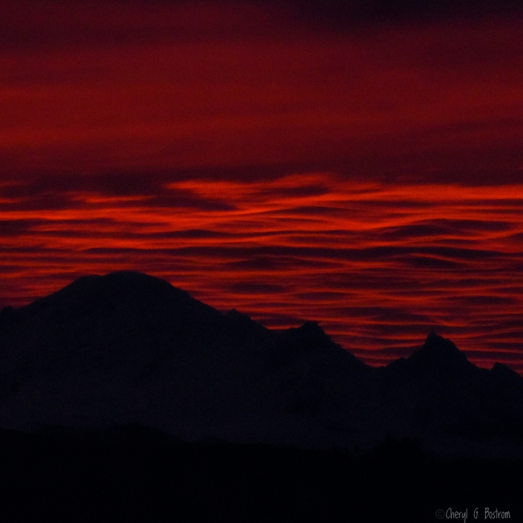 Crimson-first-light-over-Mt-Baker-resembles-sea