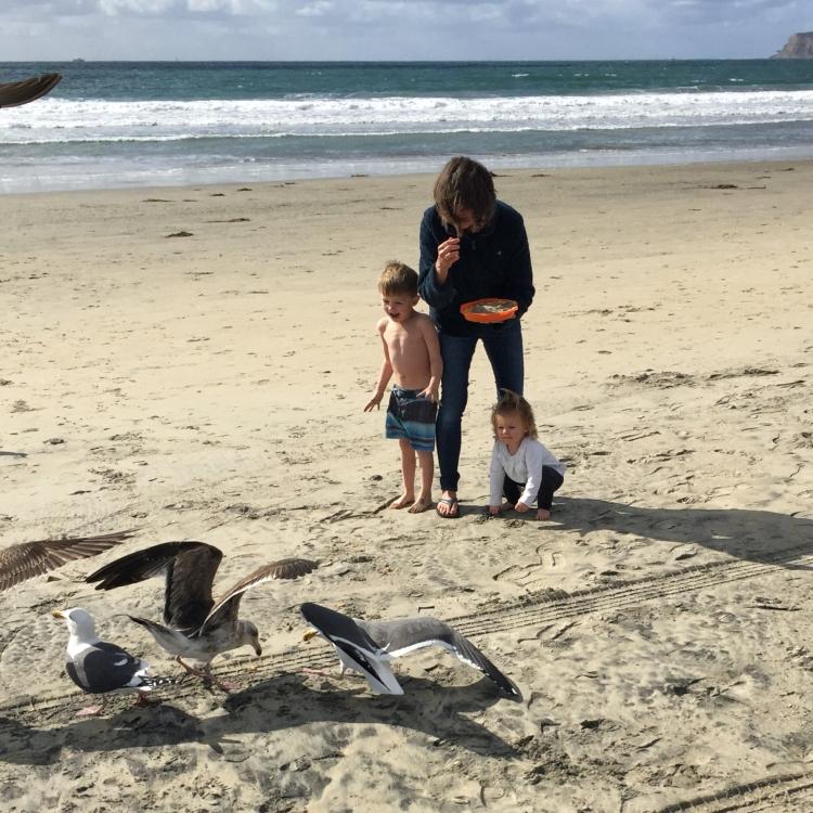Feeding gulls on beach with grandchildren