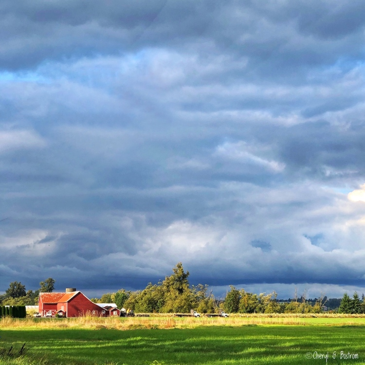 Sunlight on red barn in front of storm clouds