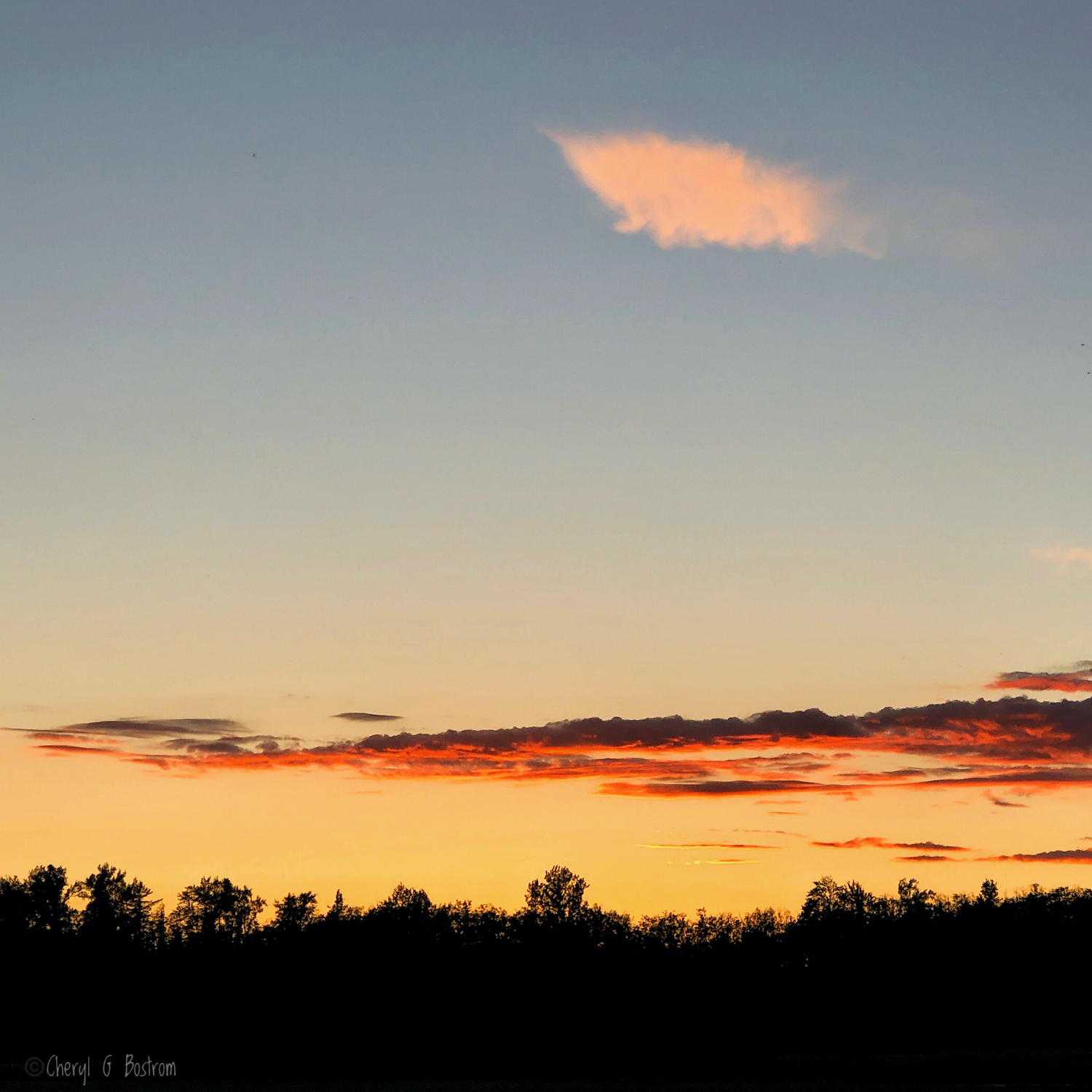 pillow-cloud-over-sunset-and-forest