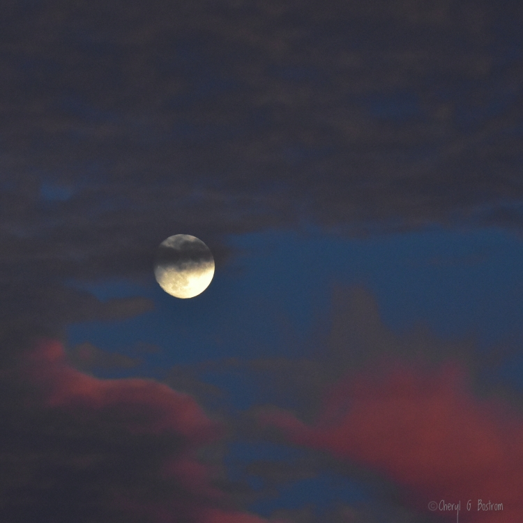 Full moon rises between dark and pink clouds