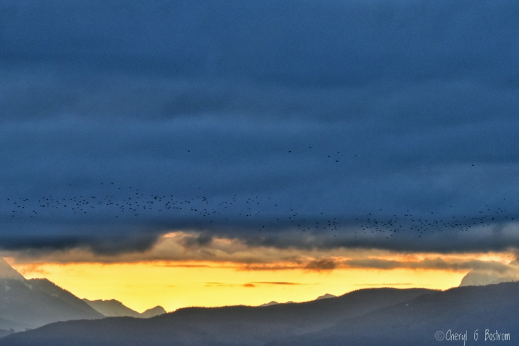 sunrise-below-heavy-clouds