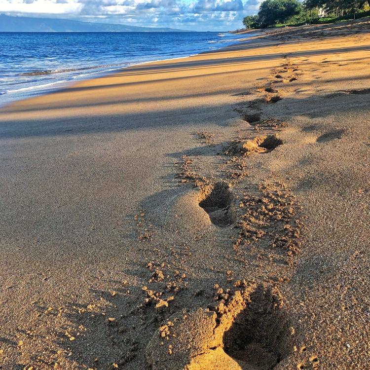 Footprints on sunny Hawaiian beach