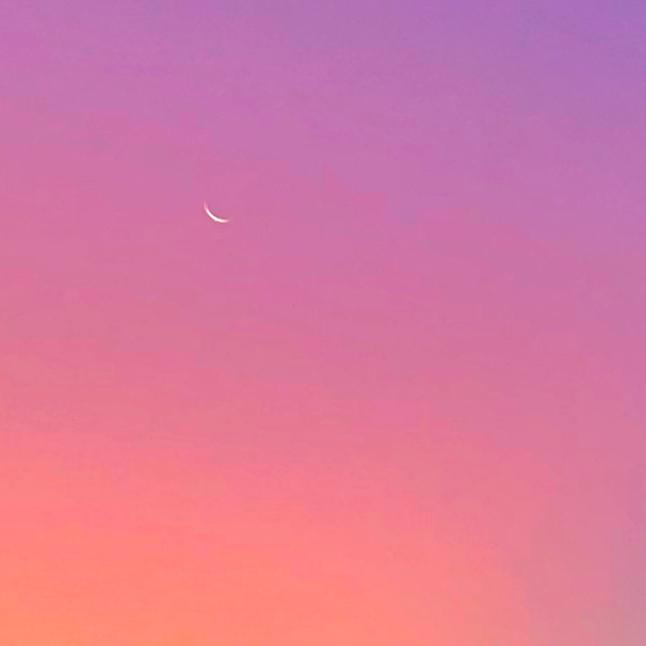 Fingernail moon in a sherbet sunrise sky