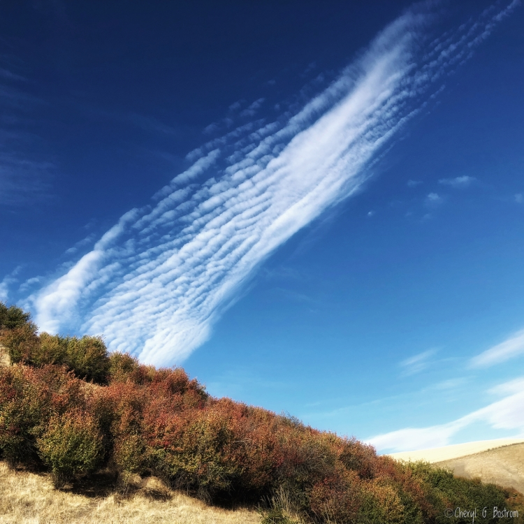 cirrus cloud swoops from hillside like a cowlick