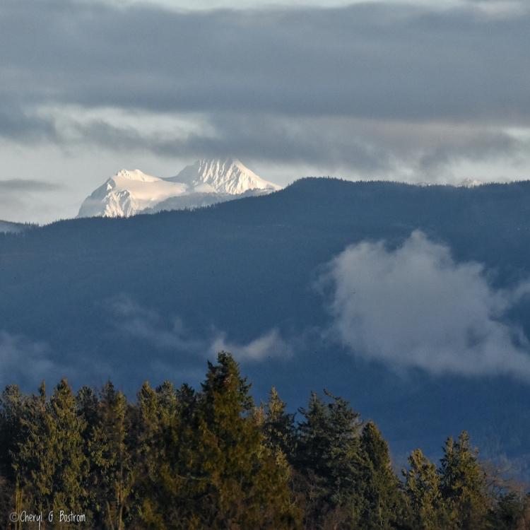 Mt-Shuksan's-Sulfide-Glacier-rises-above-foothills