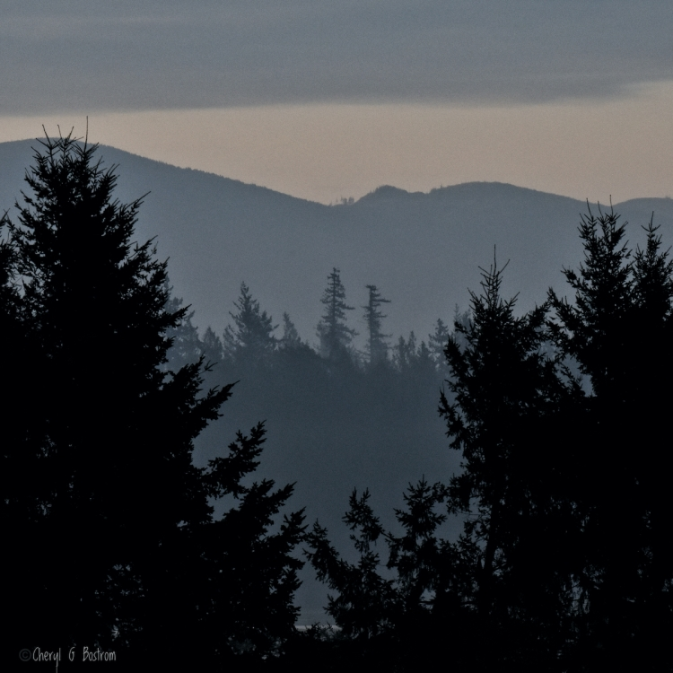 Predawn-layers-of-forests-and-hills