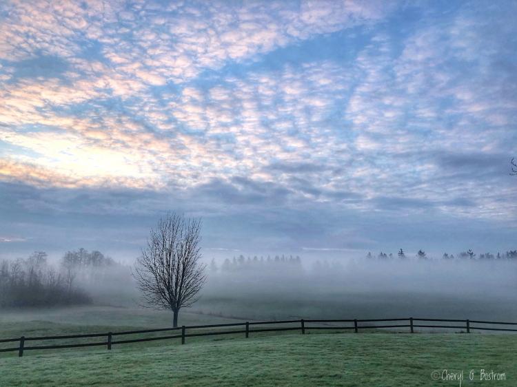Fleecy-sunlit-clouds-above-foggy-winter-fields