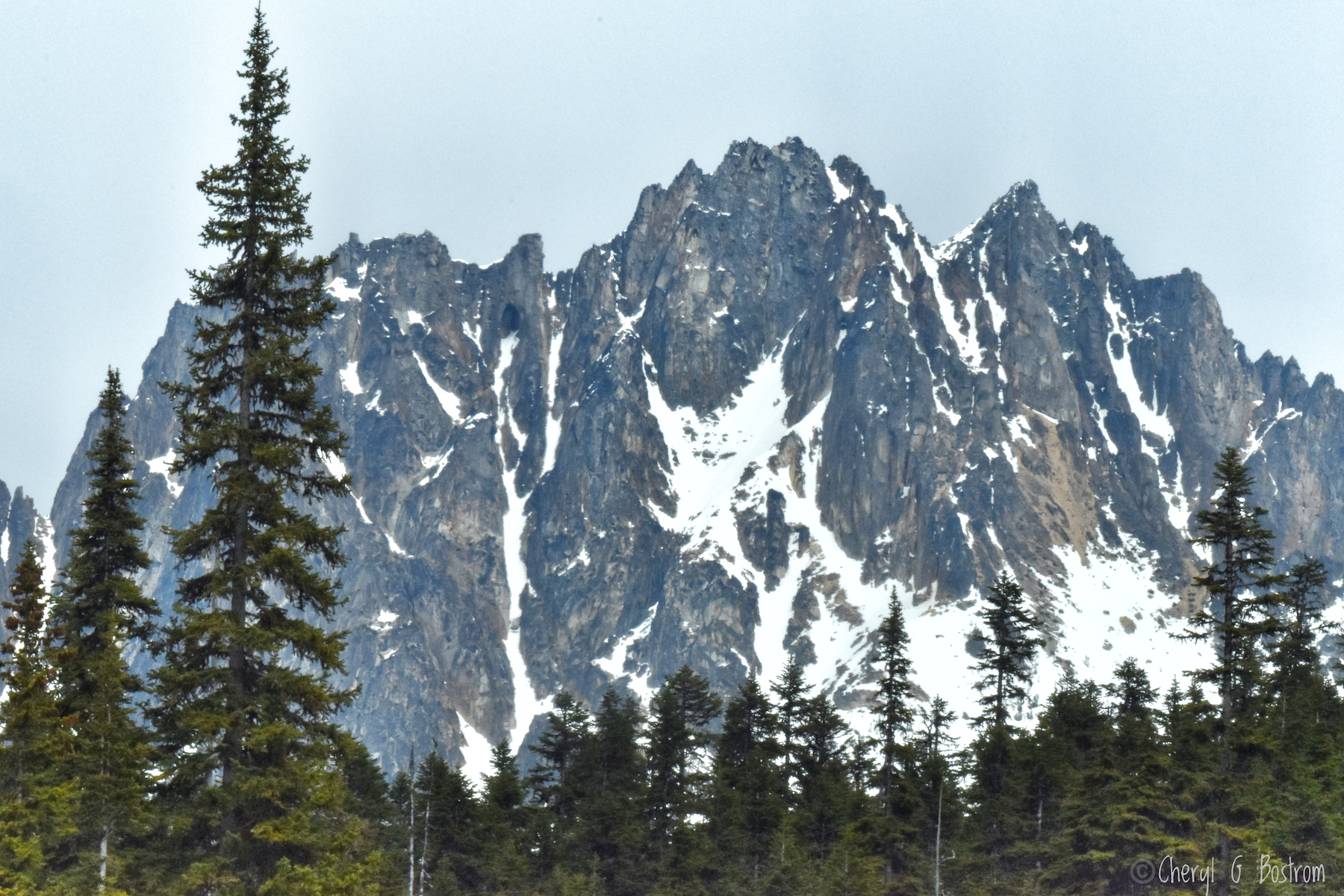 Rocky-crags-like-dogs-molars-tree-lined
