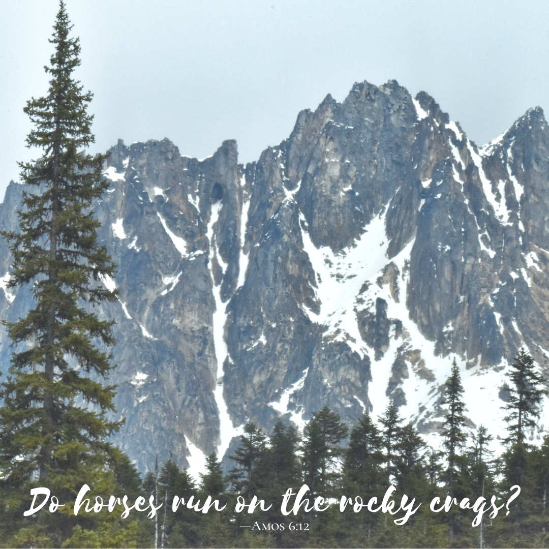 Do-horses-run-on-the-rocky-crags?