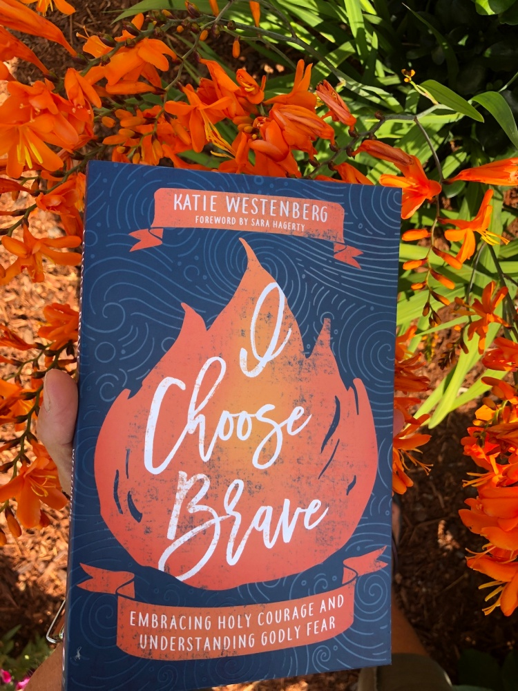 I-choose-brave-new-book