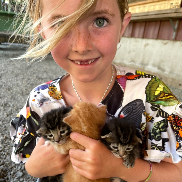 Girl Holding Kitties, Nature Writer, New Book, Summer Reads, Book Club Books