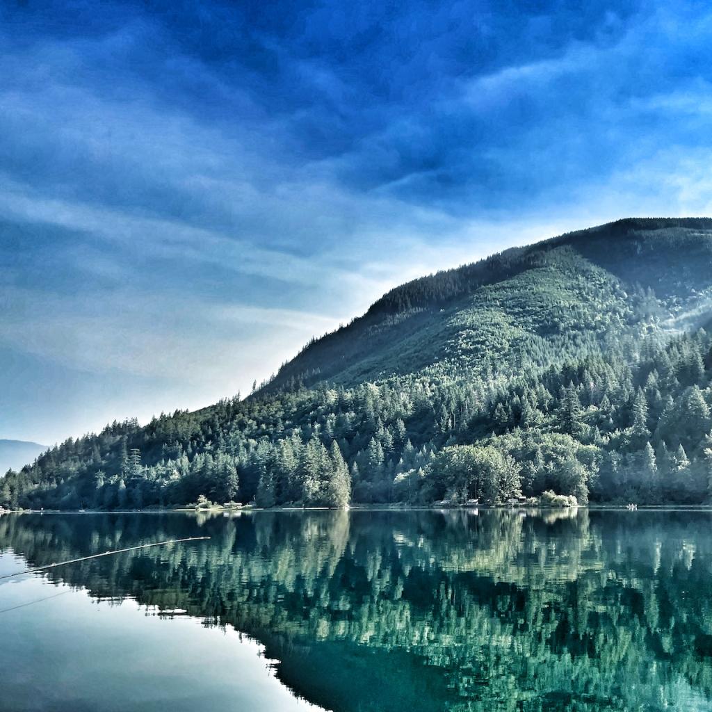 lake-scene-book-reviews-star-ratings-for-books