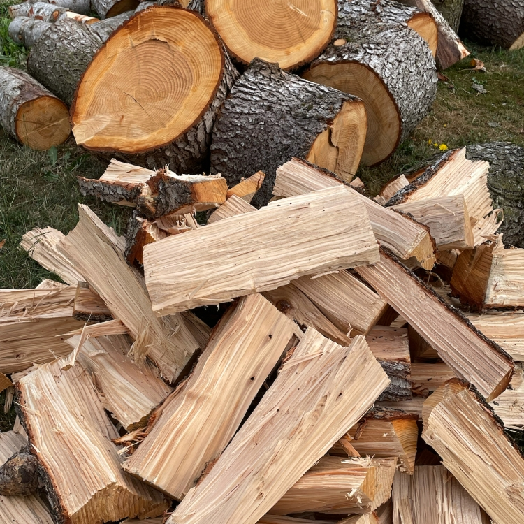 firewood-rounds-and-split