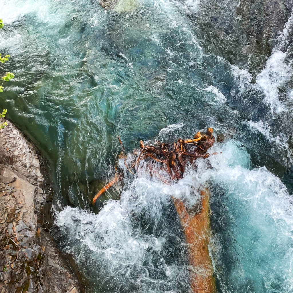 uprooted-log-in-aqua-glacier-river